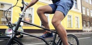 Falt e-Bike Vello Bike+ mit Zehus Antrieb