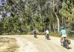 e-Bike Urlaub in der Gruppe