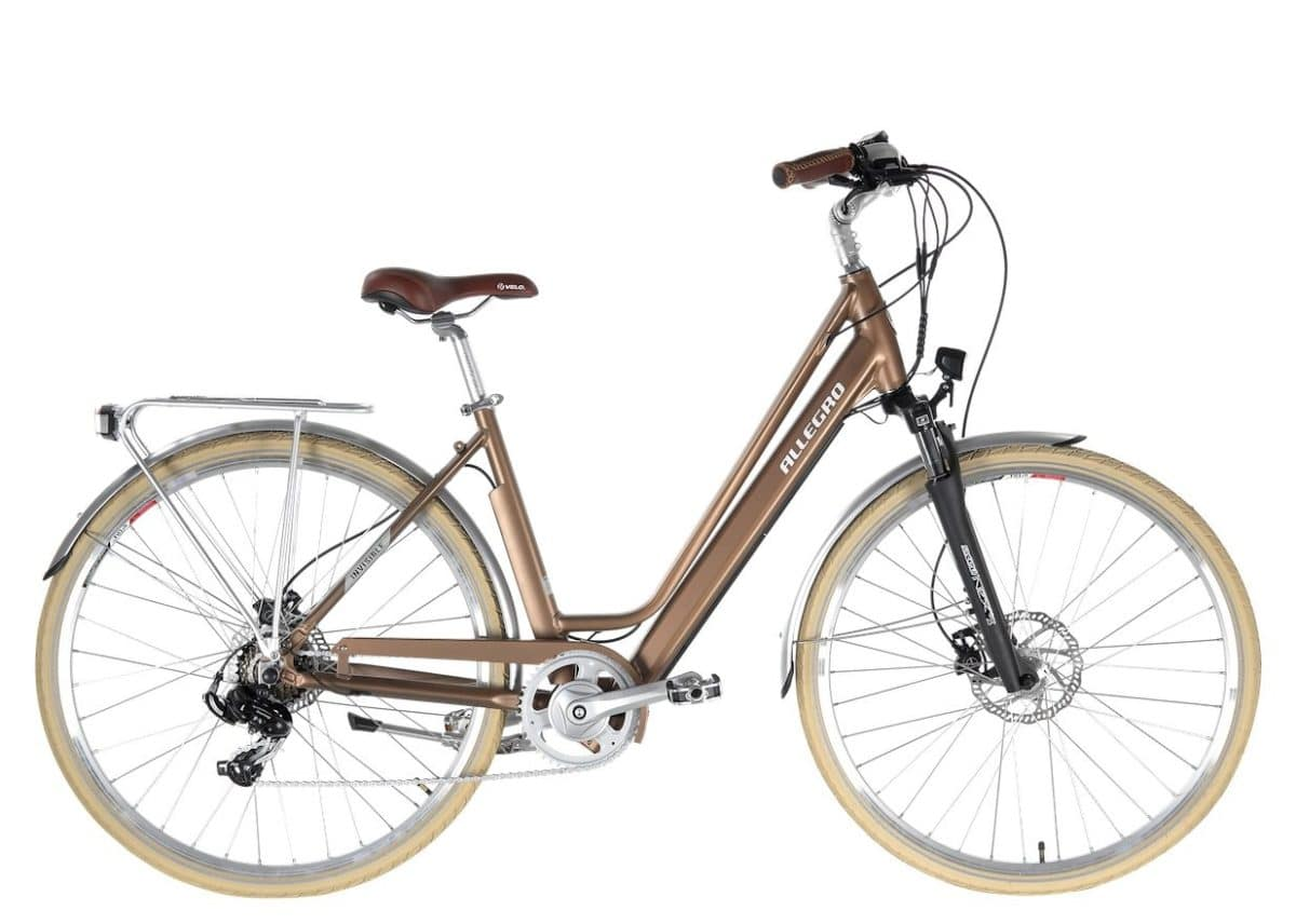 Allegro e-Bikes Invisible City bronze