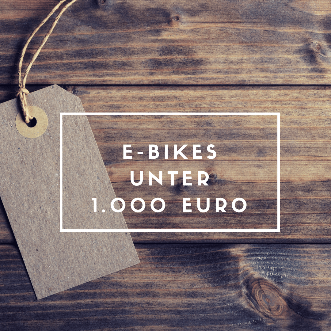 geschenketipp e bikes unter euro ebike. Black Bedroom Furniture Sets. Home Design Ideas
