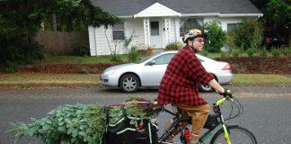 Weihnachtsbaum mit dem (e-)Bike transportieren