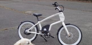 YouMo Cruiser e-Bike Test Cool mit Hund