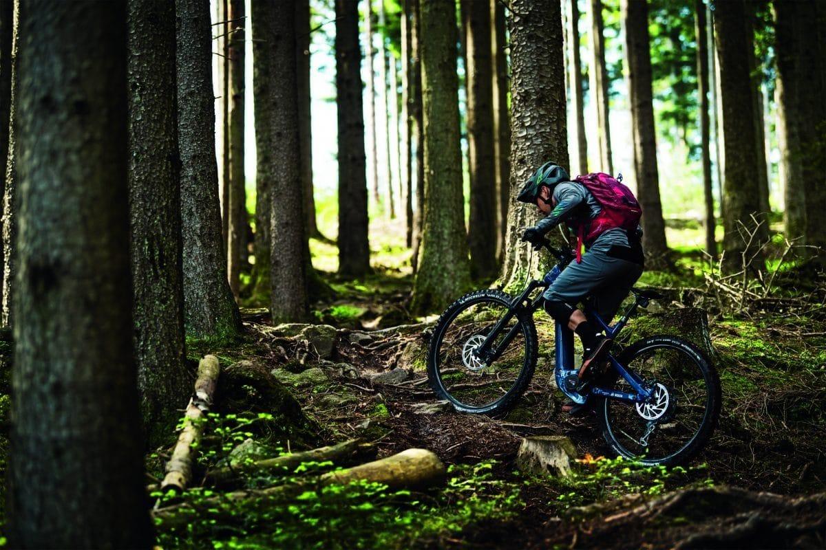 Mountainbiker nutzt PowerTube 625 für eine Waldfahrt
