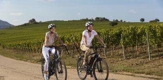 FISCHER E-Bikes: ein Überblick