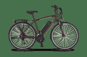 Prophete Entdecker e9.6 Trekking E-Bike 28-Zoll Herren