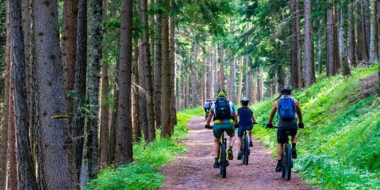 E-Bike und Nachhaltigkeit - wie passt das zusammen? - eBikeNews