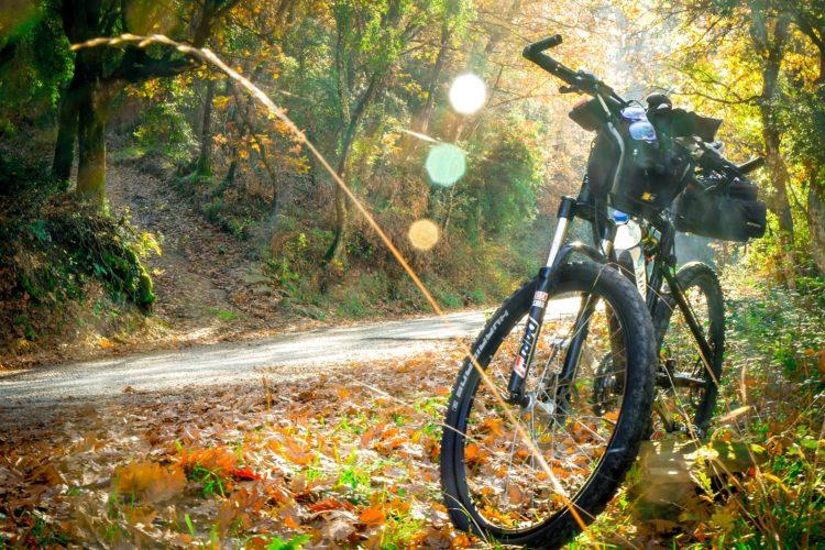Trekking-E-Bike Cross - eBikeNews